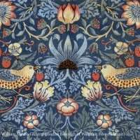 William Morris : let beauty rule ! - Mercredi 8 mai 2019 10:00-12:00